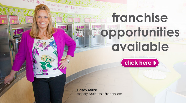 Menchie's Franchise opportunities are available